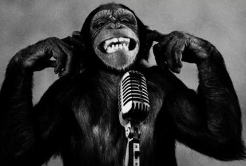 monkey-on-microphone