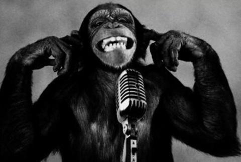 monkey-on-microphone